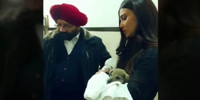 Daisy Shah rescues a puppy in distress.