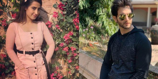 Lead actors of 'Meri Gudiya' show Vineet and Aalisha share their work from home mantra!