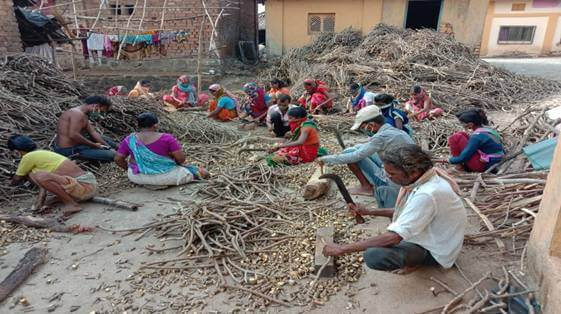 Van Dhan Vikas Kendras in Maharashtra lead in innovative initiatives to help tribal gatherers during ongoing Covid crisis