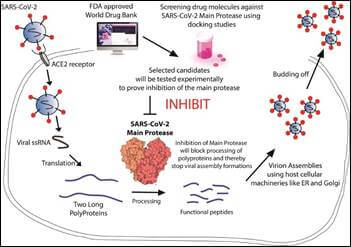 IIT, BHU to re-purpose approved drugs from DrugBank database for treating COVID-19 by targeting SARS-CoV-2 main protease