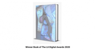 When Talent Meets Recognition | 'Dots & Streaks' Winner Of LIT Digital Awards 2020