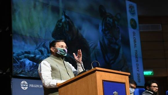 Union Environment Minister releases detailed report of Tiger Census on the eve of Global Tiger Day