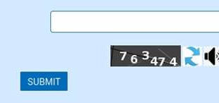 All High Court websites now have captchas accessible to physically disabled people